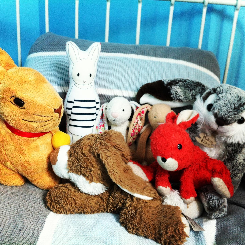 photo de famille des lapins