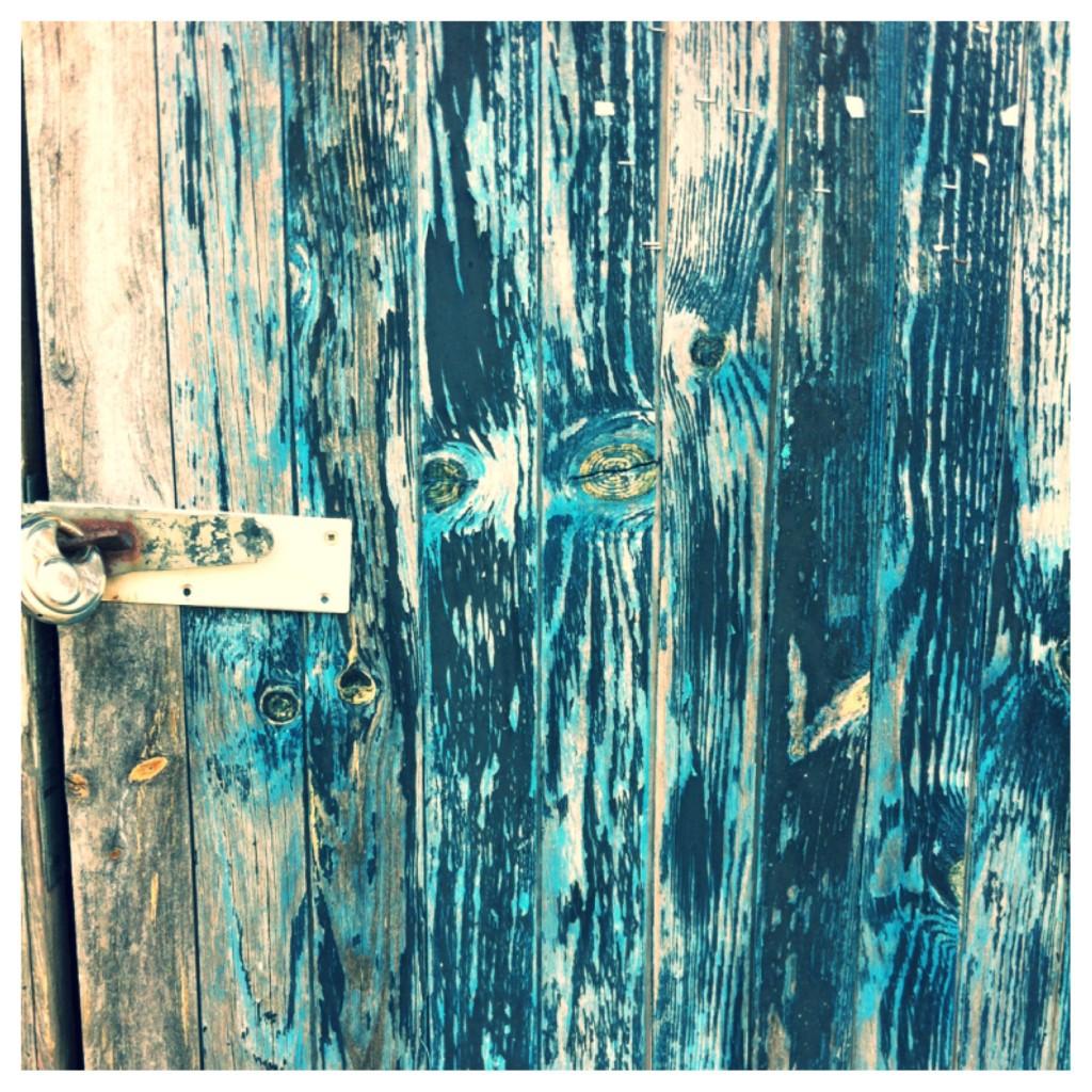 Porte d'une cabane sur le Port de Goulée